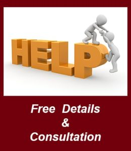 free english consulting